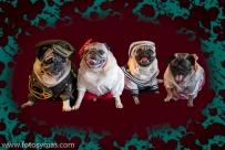 Navidad con Carlinos Calendarios{Copyright»}-10